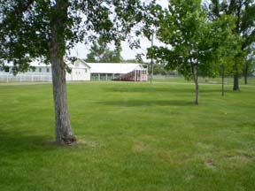 Side View of Grass Area